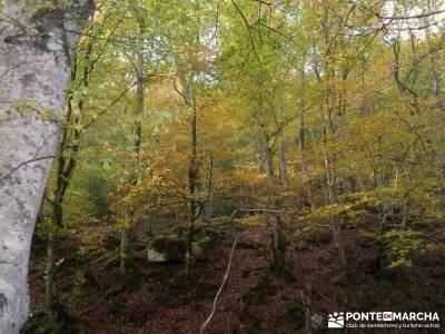 Parque Natural Saja-Besaya y Valderredible (Monte Hijedo) grupo senderista senderos club de montaña